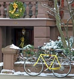 """""""Yellow Bike"""""""