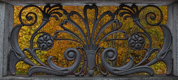 """Foliage Through Wrought Iron"""