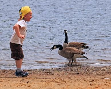 """Yakety-Yak, Quack, Quack"""