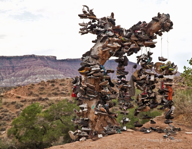 The Sneaker Tree001