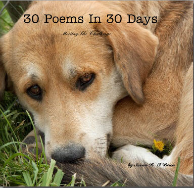 30 Poems In 30 Days